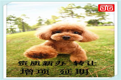 http://www.bdxyx.com/qichejiaxing/48418.html