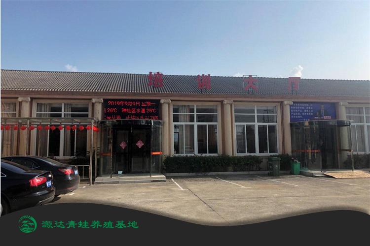 南京青蛙养殖中心哪家比较专业?